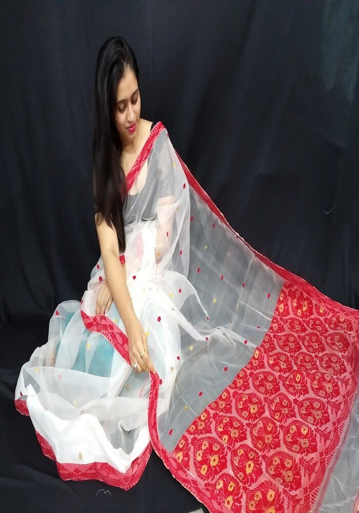 Eagle Handloom Nooni Silk Saree with Blouse Material